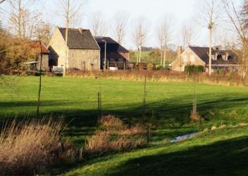 In 't Veld