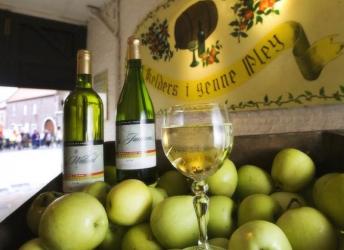 Cidre 'Kelders I genne Pley'