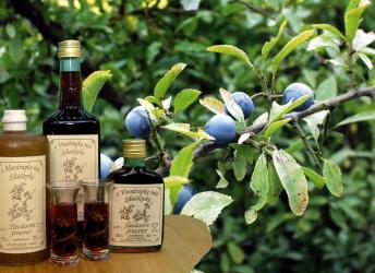 Voerdrupke blackthorn gin or sleedoornjenever